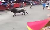 Bull Kills A Guy
