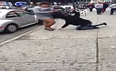 Dominican Womens Fighting On Street