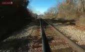 Cop cut via train