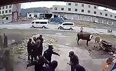 Five cop fiercely beat helpless lady