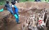 Secret grave for some bodies