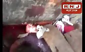 Brothers Kill All Police Officers In Egypt