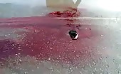 Bloodshed in Daraa by Syrian Army