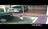 Asian Man In Car Ran Over His Daughter