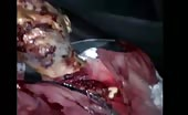 Man Killed By Syrian Army