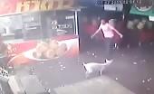 Evil! Man Kicks The Dog