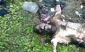 Rotten, Half Eaten Corpse